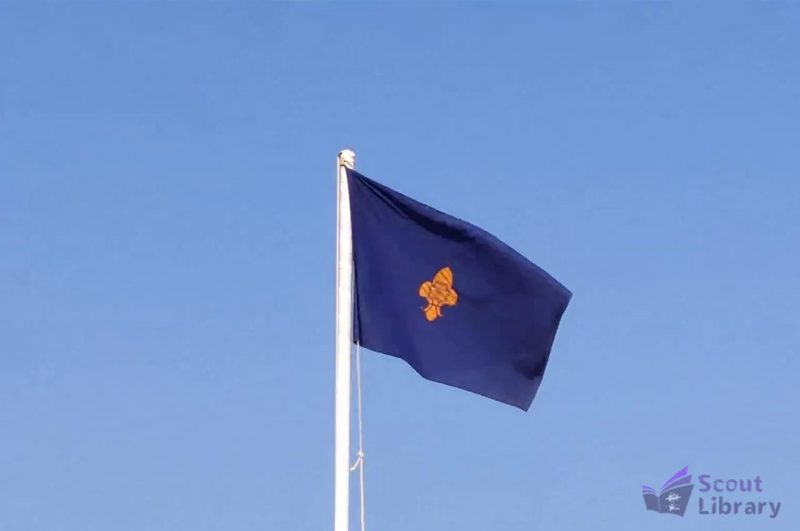 Bharat scout and guide flag