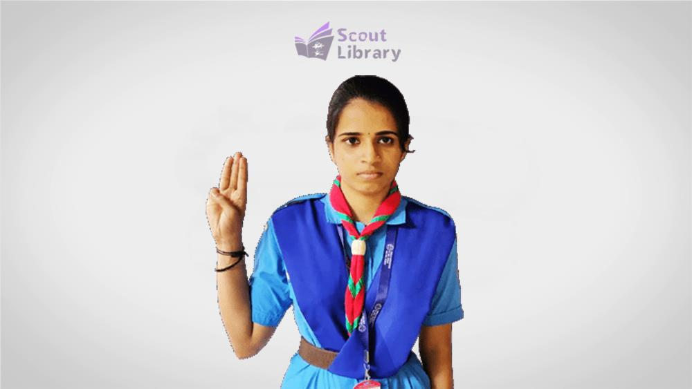 scout_guide_sign